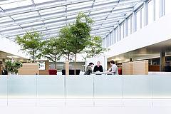 Offen gestaltete Arbeitsplätze vereinen das konzentrierte Arbeiten genauso wie den Austausch mit den Arbeitskollegen.